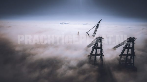 The Drone Collection 11